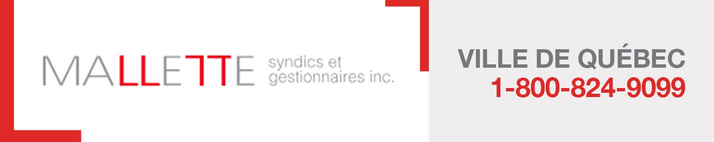 Mallette Syndics de Faillite et Gestionnaires Inc.